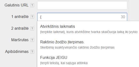 Google adwords paieškos skelbimų galimybės